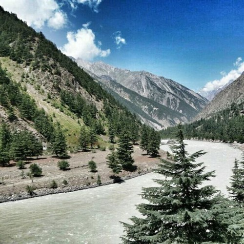 Places To Visit In Solan Himachal: Pangi Valley And The Chandra-bhaga River